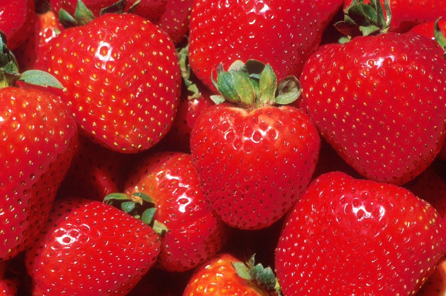 fruit uit eigen tuin, aardbeien