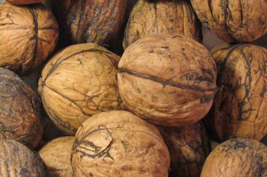 noten-gezond