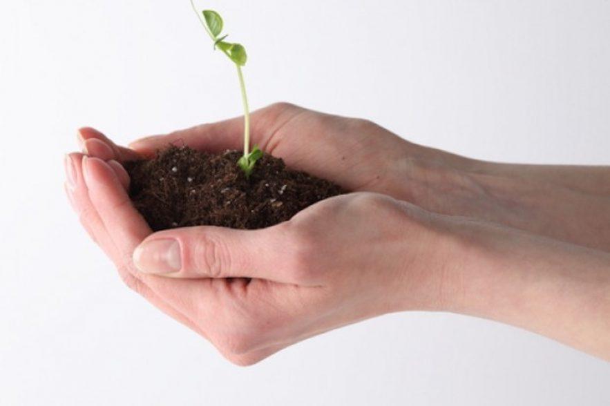 het belang van onze bodem
