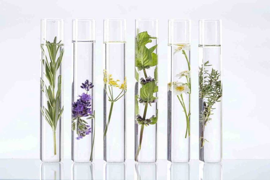 plantenstoffen