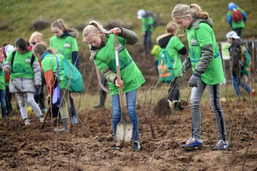 boomfeestdag in Nederland