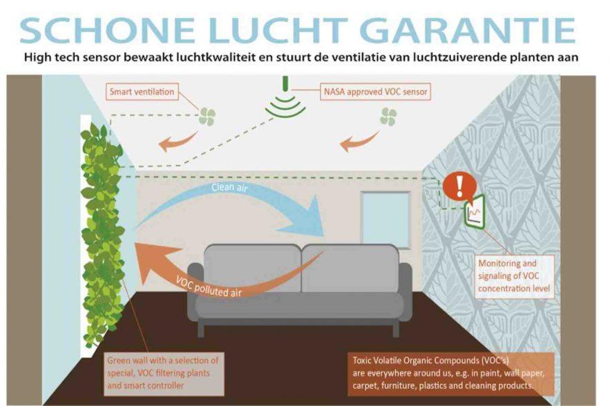 planten zorgen voor schone lucht