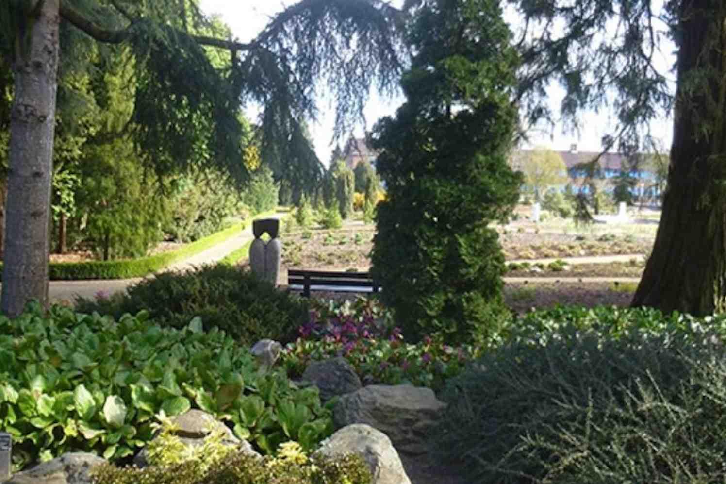 arboretum, dreijen