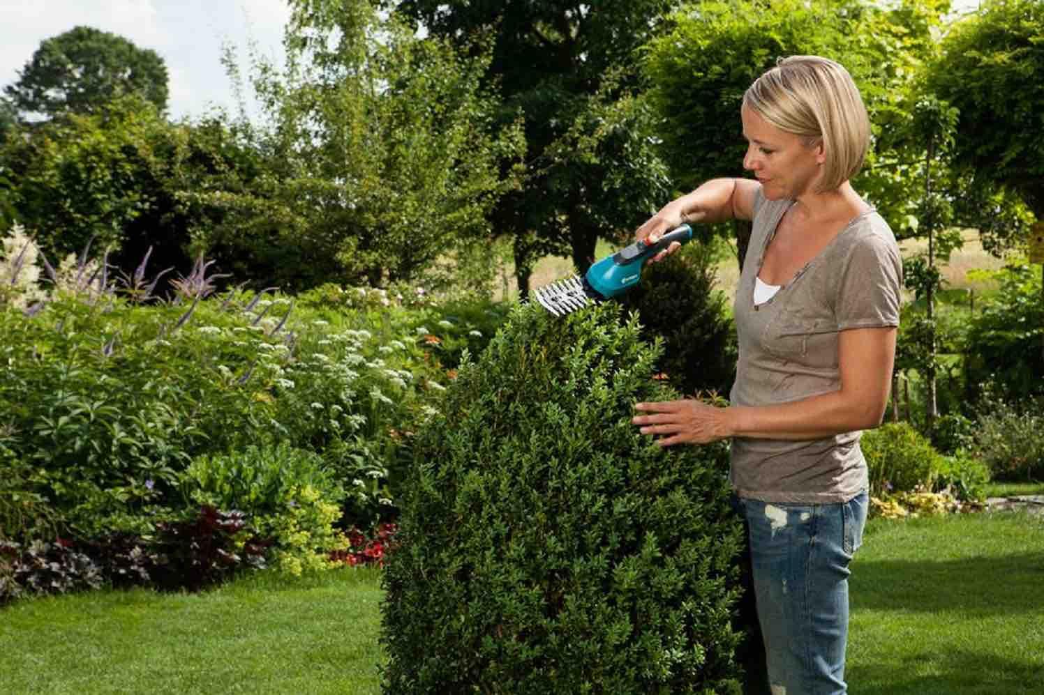 buxusschaar van gardena, snoeien