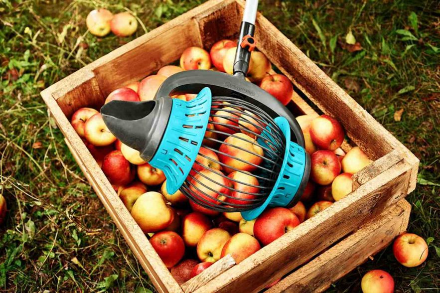 fruitverzamelaar van Gardena