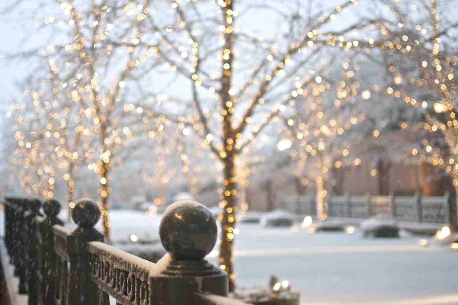 margriet winterfestival, beurs