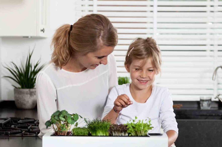 cressen en keukenkruiden