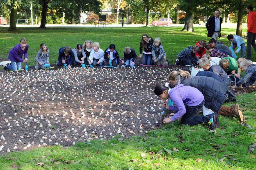 kinderen planten bollen in vondelpark