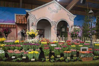 Lentetuin Breezand viert de lente