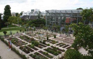 hortus botanicus leiden, Darwin