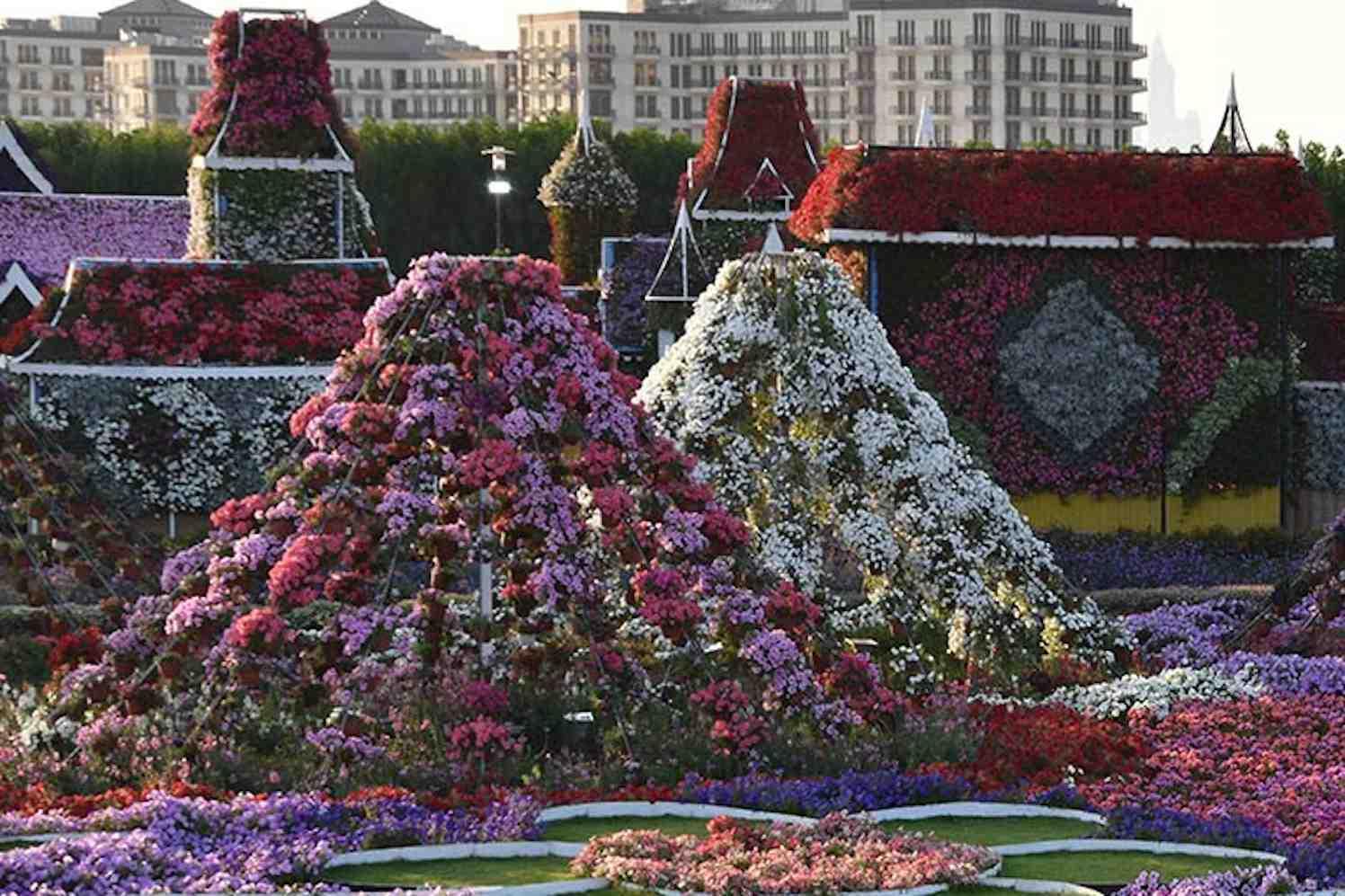 miracle garden bloementuin