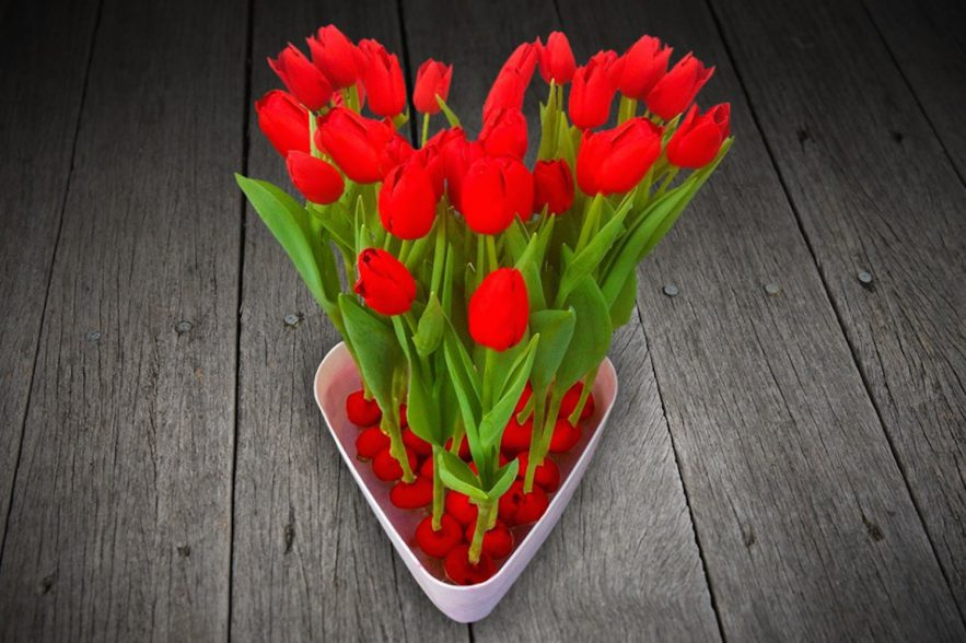 Gekleurde Tulpenbollen Van Bol Tot Bloem Groenvandaag