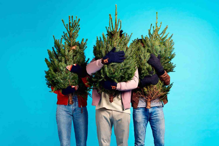kerstbomen on-demand door Uber