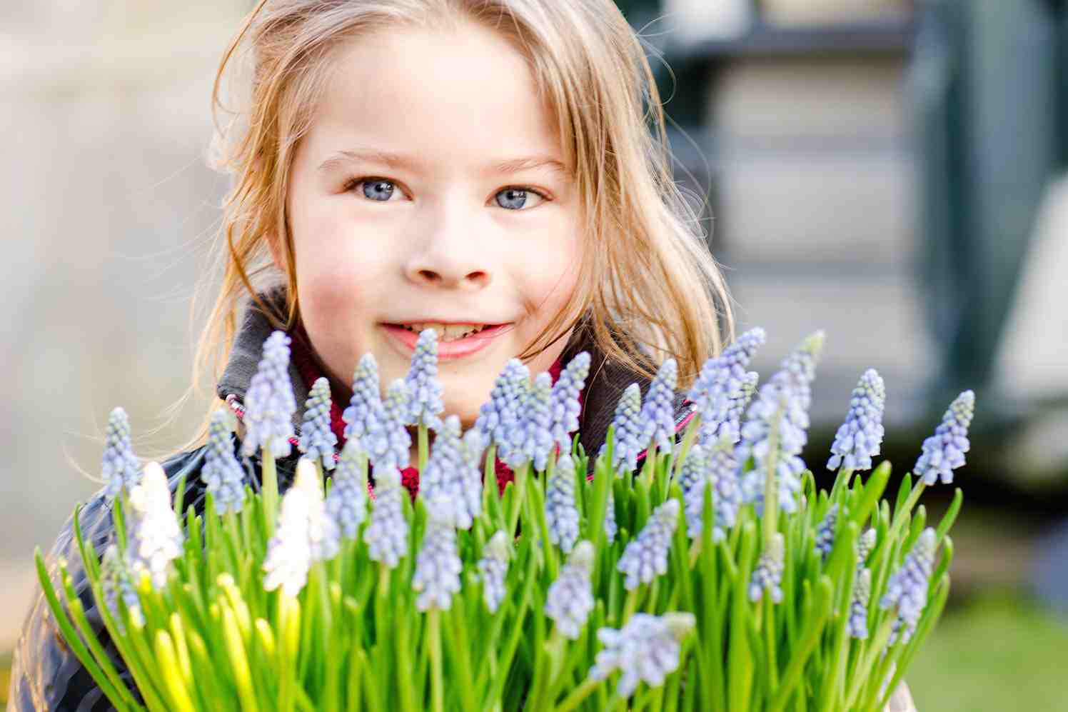 hyacinth en lente