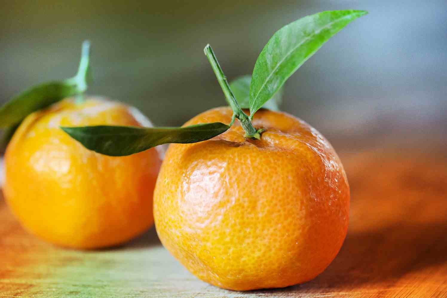 vakantiegevoel citrus