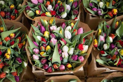 Tulpenverkoop