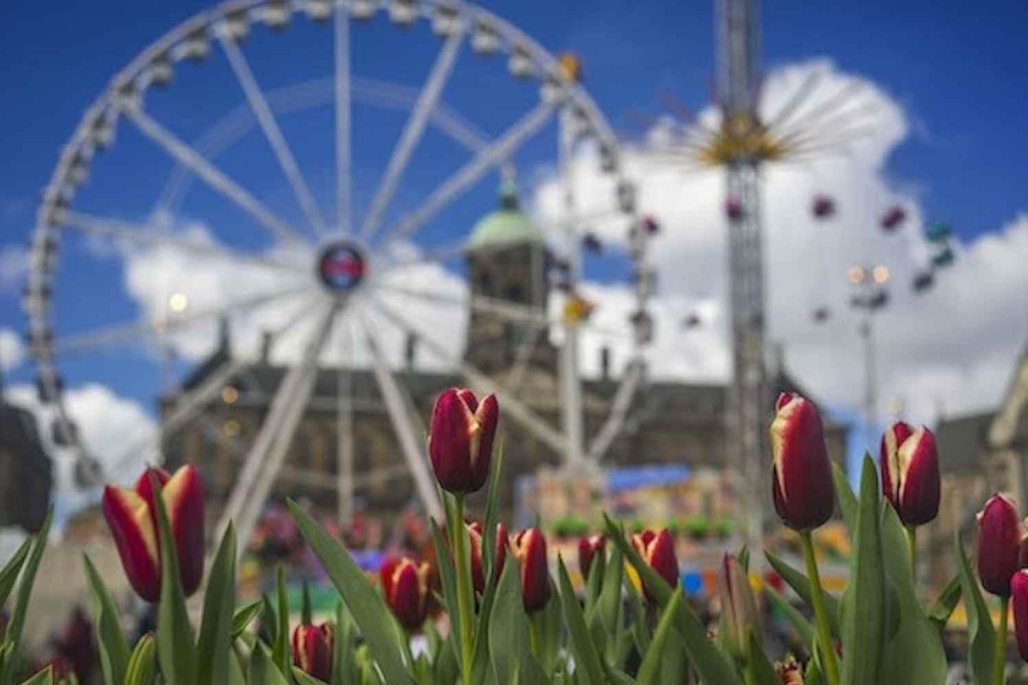 Tulp Festival bollenplanttijd
