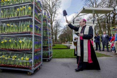 bloemen voor de paus