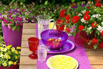 festival_colours