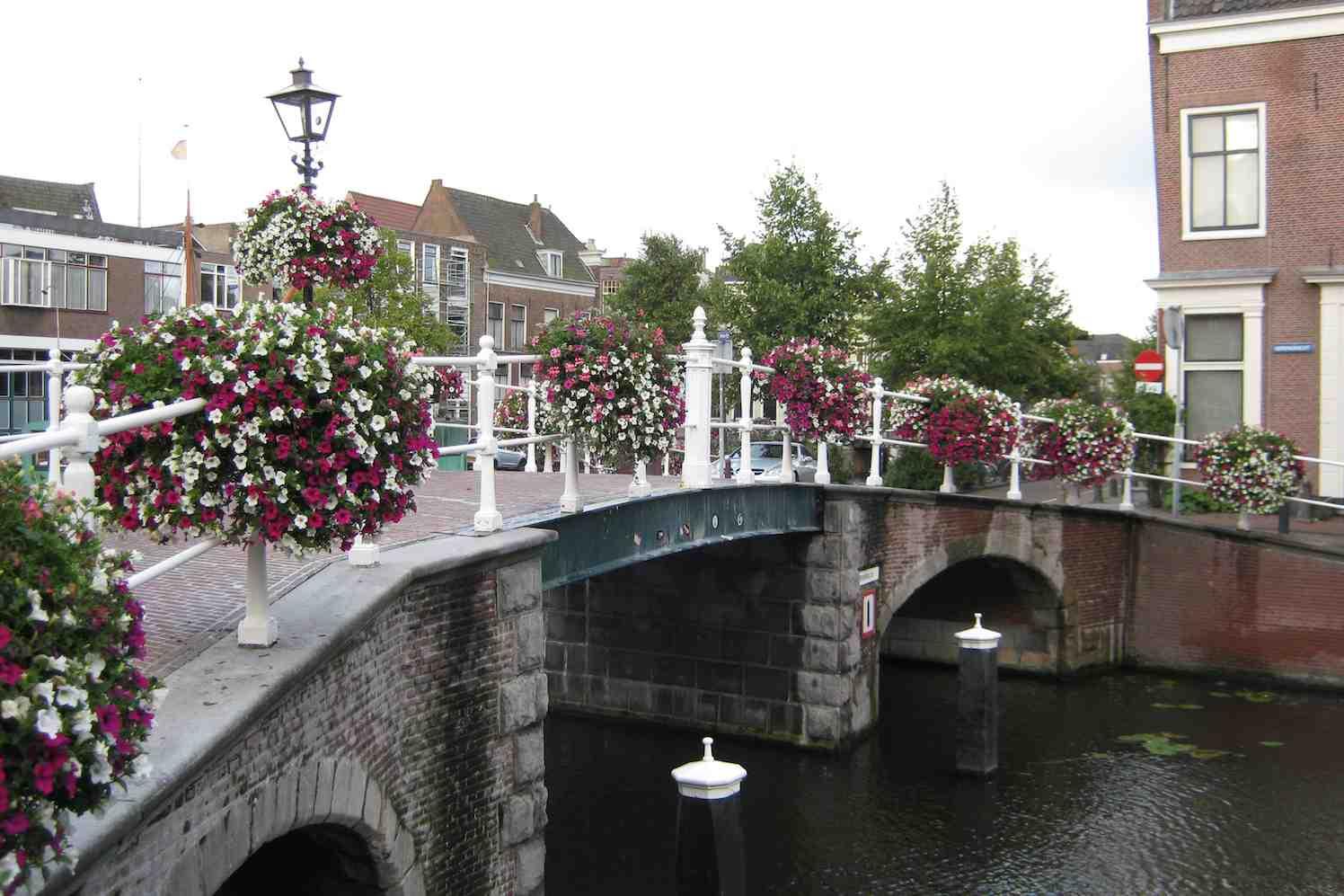 stadscentra brug met bloemen