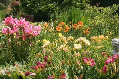 tuinen noordoostpolder