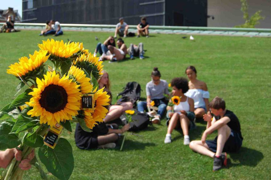 Van Gogh zonnebloemen museumplein