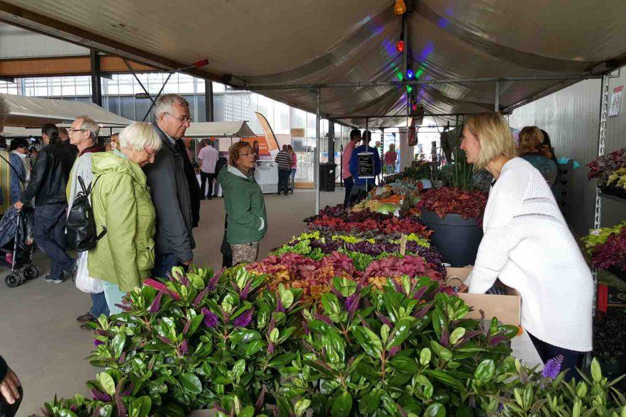 boerenversmarkt