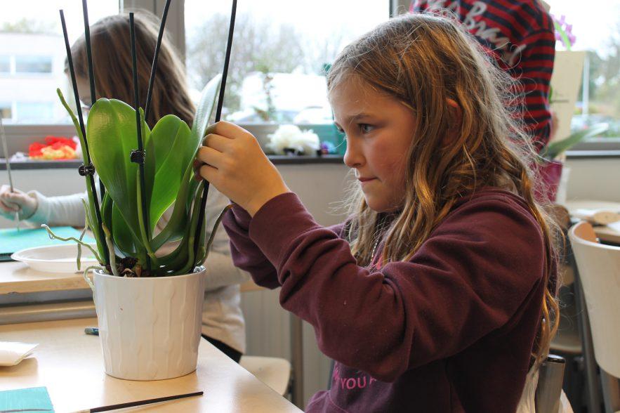 orchideeën, grootouderdag 1 oktober
