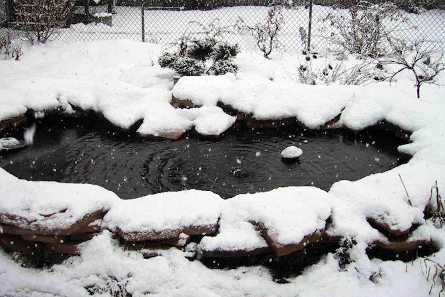 ijsvrijhouder Pond Heater-Velda-winter