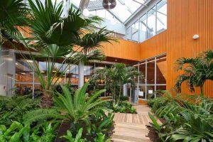 Interieurbeplanting-Campus-Tilburg