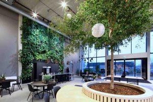 interieurbeplanting-Workbrands-Eindhoven