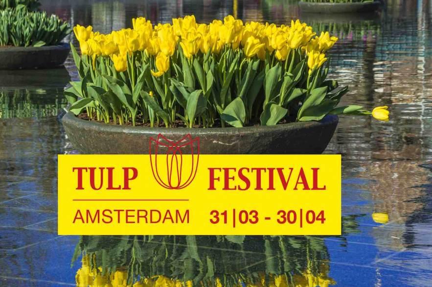 tulpfestival-tulpenlint