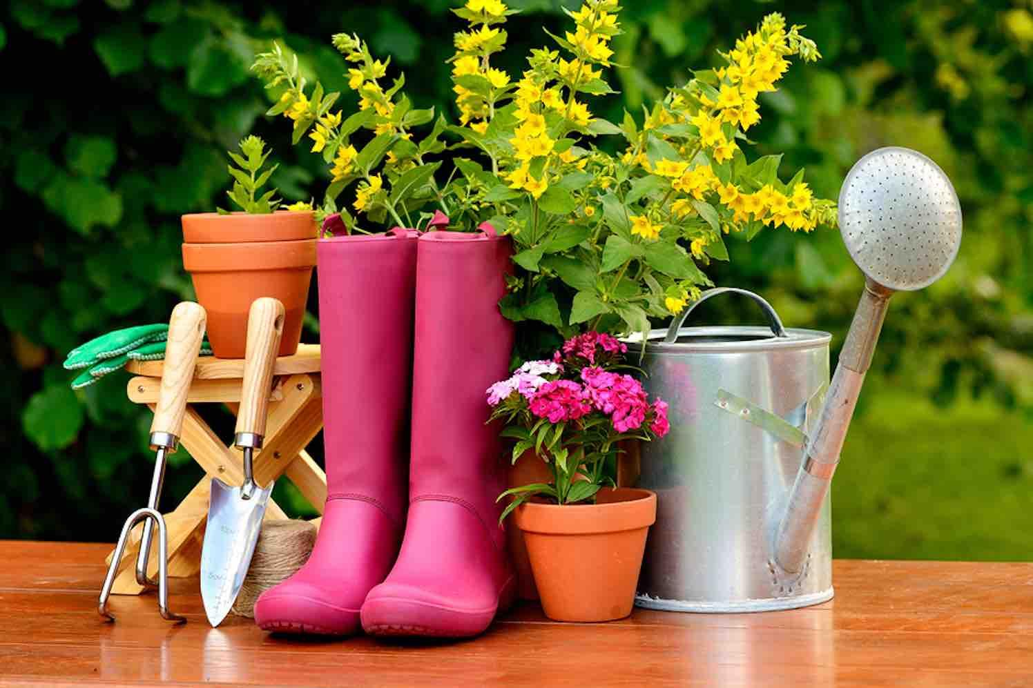 tuinevent tuin & sfeer