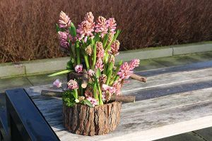 hyacint johanna