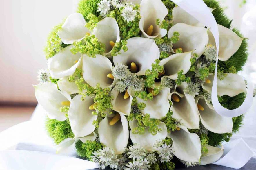 bruidsmodeshows