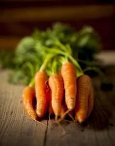 groenteplanten wortels