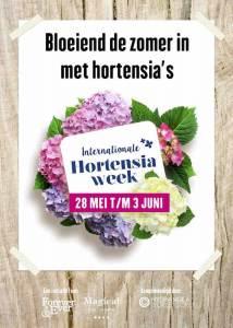 hortensiaweek