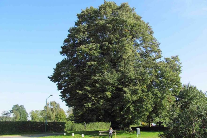 10 bijzondere Noord-Brabant