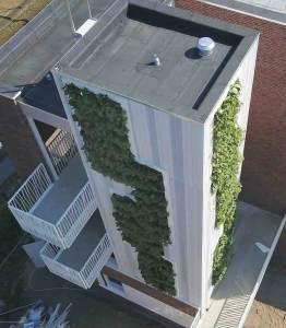 groene toren