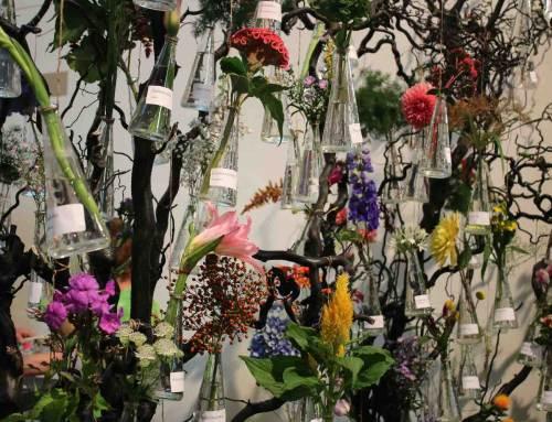 Flower Power tijdens zomerbloemen-tentoonstelling