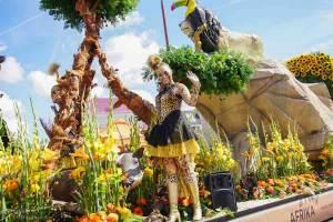 erica terpstra flower parade