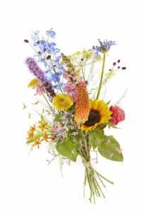 veldboeket en zomerbloemen