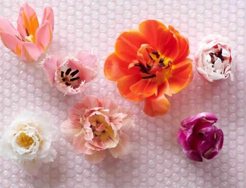 Tulpen met vleugje futurisme