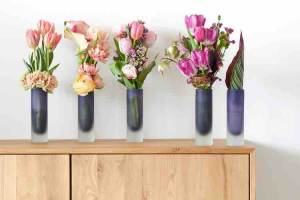 tulpen en trend