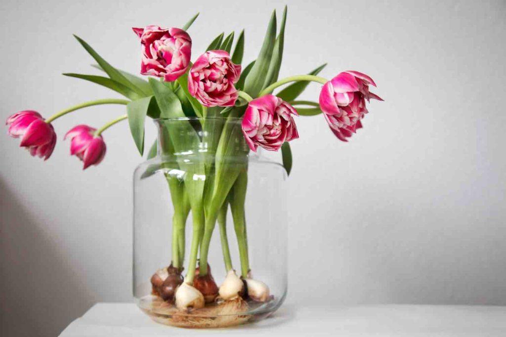 bulb bouquet