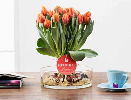 Bulb Bouquet, ambachtelijk, dus anders