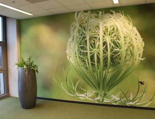 Natuur in huis met fotobehang van bloemen en planten