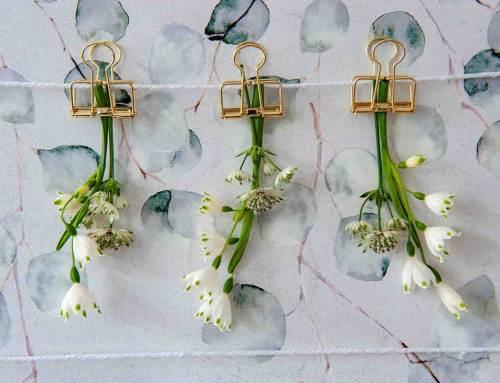 Bolbloemen: bijzondere decoratie voor je interieur