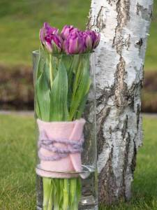 Tulipa Purple Piony