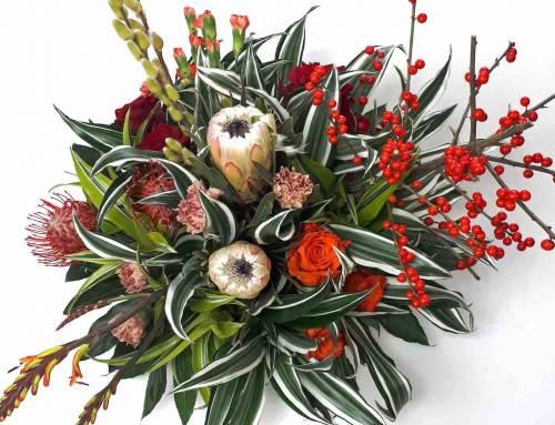 Agnes: Blijft het tropische Dracaena snijgroen goed in de kou?